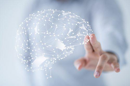 Gehirn-Netzstruktur-Neurologe-Stade