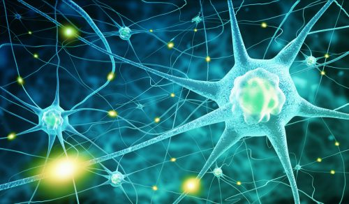 Neuronen-Neurologe-Stade